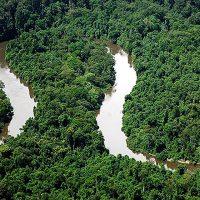 Em defesa da Amazônia e do Cerrado