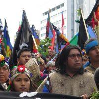 Do 'consenso das commodities' ao 'consenso anti-indígena'?