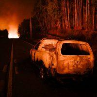Desmantelamento do Estado – Política Incendiária