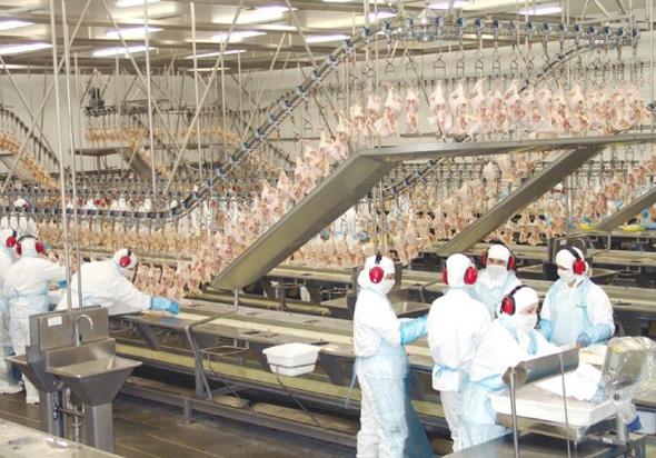 Brasil Foods quer fazer o pobre engolir o que o rico rejeita!
