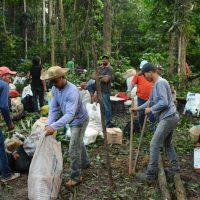 MST ocupa latifúndio no Maranhão