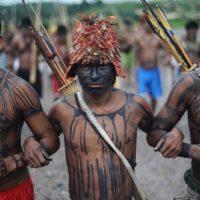 Organizar a resistência indígena para derrotar Bolsonaro e o facismo! Pela Demarcação das Nossas Terras!