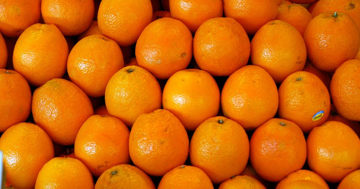 As mulheres não querem ser laranjas do partido de Bolsonaro