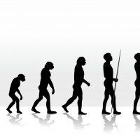 """Materialismo ou """"criacionismo"""" histórico?"""