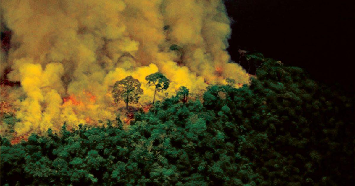 Estudantes lançam manifesto em defesa da Amazônia