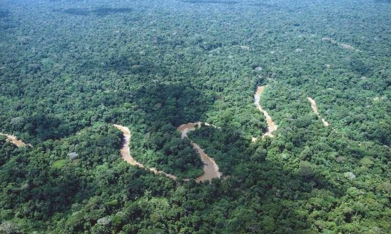 A Amazônia é a maior prova de que esse governo é profundamente antipovo