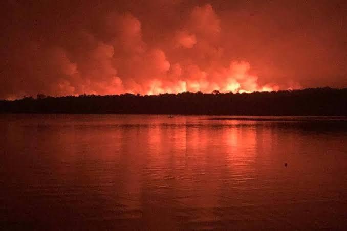 Novas queimadas na Amazônia: um chamado para a Greve do Clima!