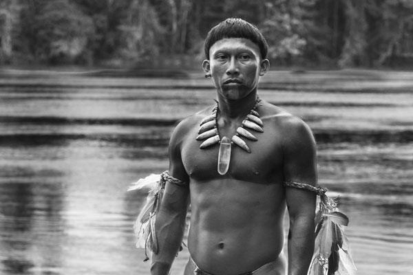Breves reflexões (im)pertinentes sobre a questão indígena no Brasil atual