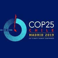COP 25: Passar da decepção à ação