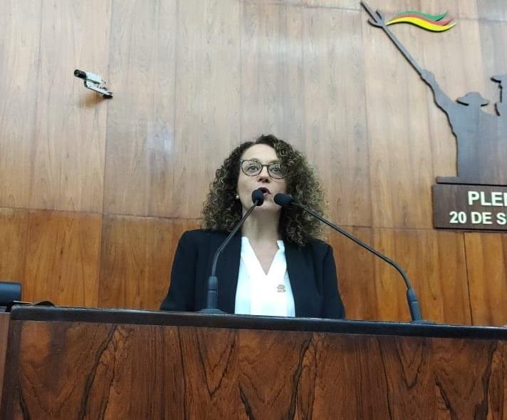 Justiça acata ação da deputada Luciana Genro e determina retirada do PLC 503 da ordem do dia