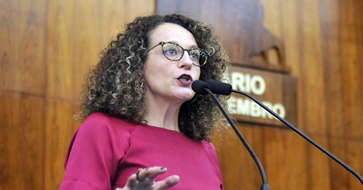 Luciana Genro apresenta projetos do PSOL para auxiliar vulneráveis na crise do coronavírus