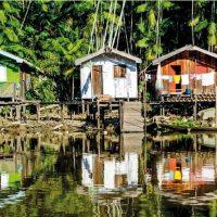 Lógica marxista e Amazônia em tempos de Bolsonaro