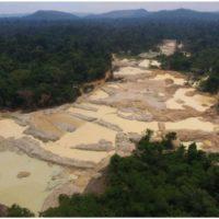 Governo Bolsonaro amplia interferência política no IBAMA para enfraquecer ações de combate ao desmatamento na Amazônia