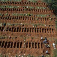 Imunidade de rebanho e o fim da pandemia no Brasil