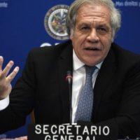 Parlamentares do PSOL e outros partidos enviam carta ao Secretário-Geral da OEA