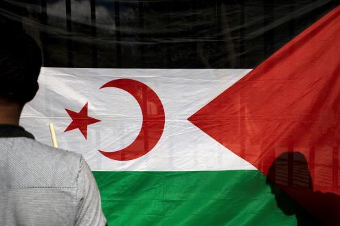 360 acadêmicos defendem referendo pela autodeterminação do Sahara Ocidental
