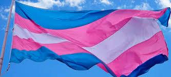 TRANSgressão política: a força das candidaturas transexuais nas eleições municipais de 2020
