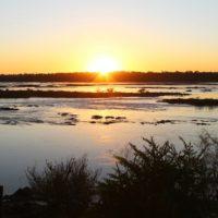 Cerrado: o berço das águas e a luta pela vida