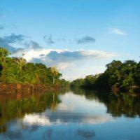 Dia mundial da água e o Brasil sem água