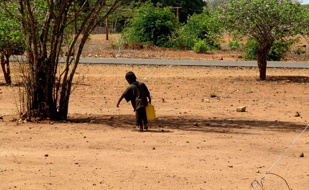 """Cabo Delgado: """"Pior cenário é Moçambique transformar-se no Afeganistão"""""""